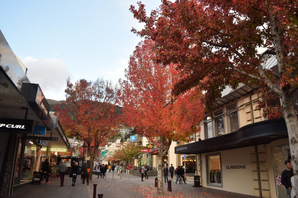 new zealand queenstown city autumn season red trees