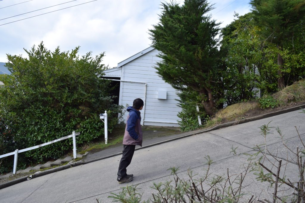 world's steepest street baldwin street in dunedin new zealand