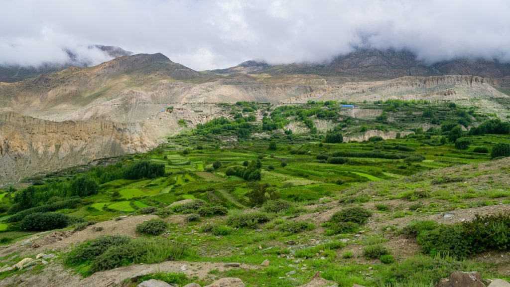 Green Valley in Annapurna Circuit Trekking, Nepal, Mustang Region