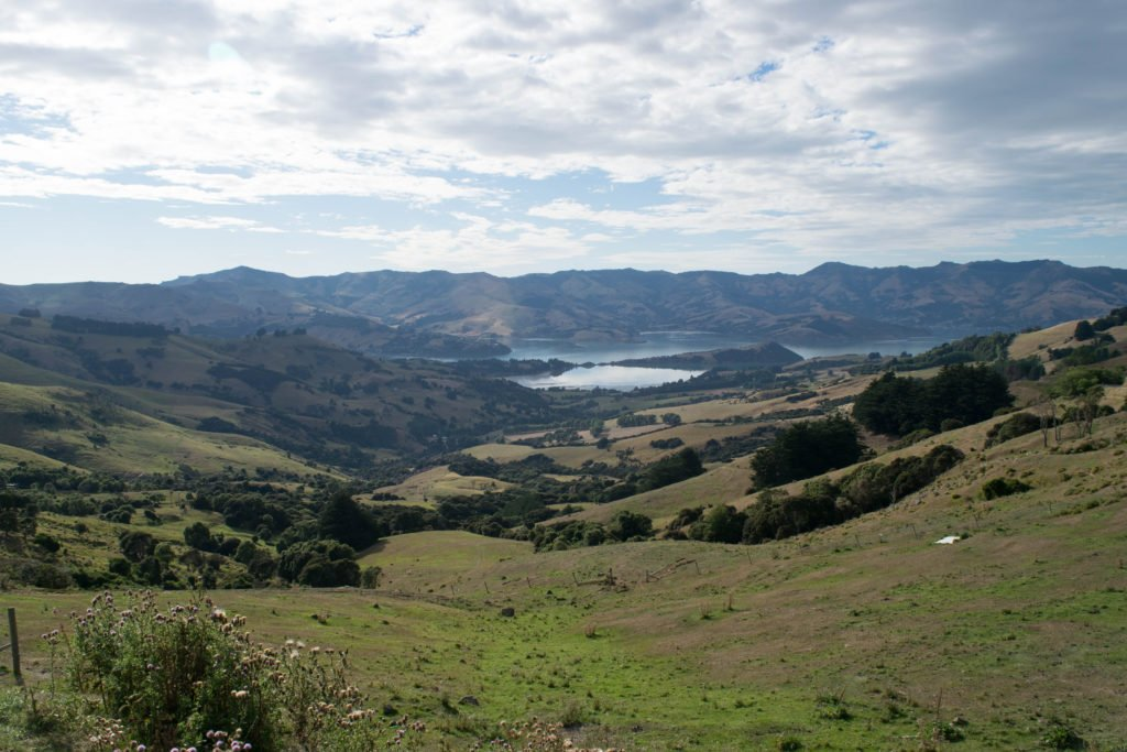 new zealand south island itinerary akaroa