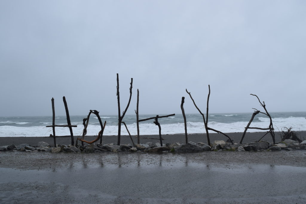 new zealand hokitika sticks landmark