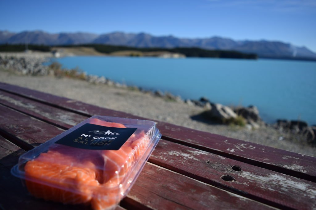 mt cook salmons in lake pukaki isite new zealand