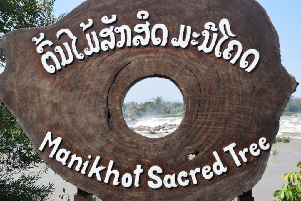 Manikhoth Sacred Tree was located from at the rocks in the middle of the waterfall