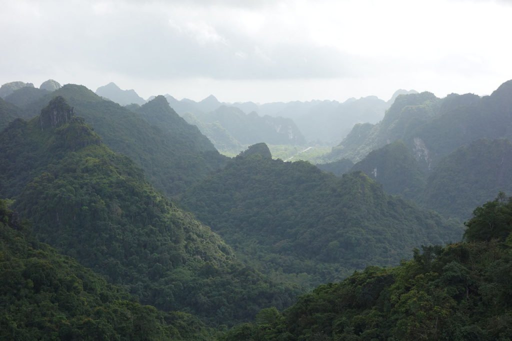 Vietnam Cat Ba National Park View
