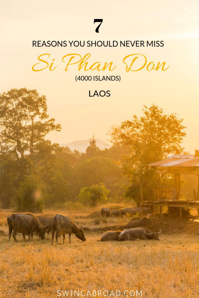 7 Reasons You Should Never Miss Si Phan Don (4000 Islands) Laos pin