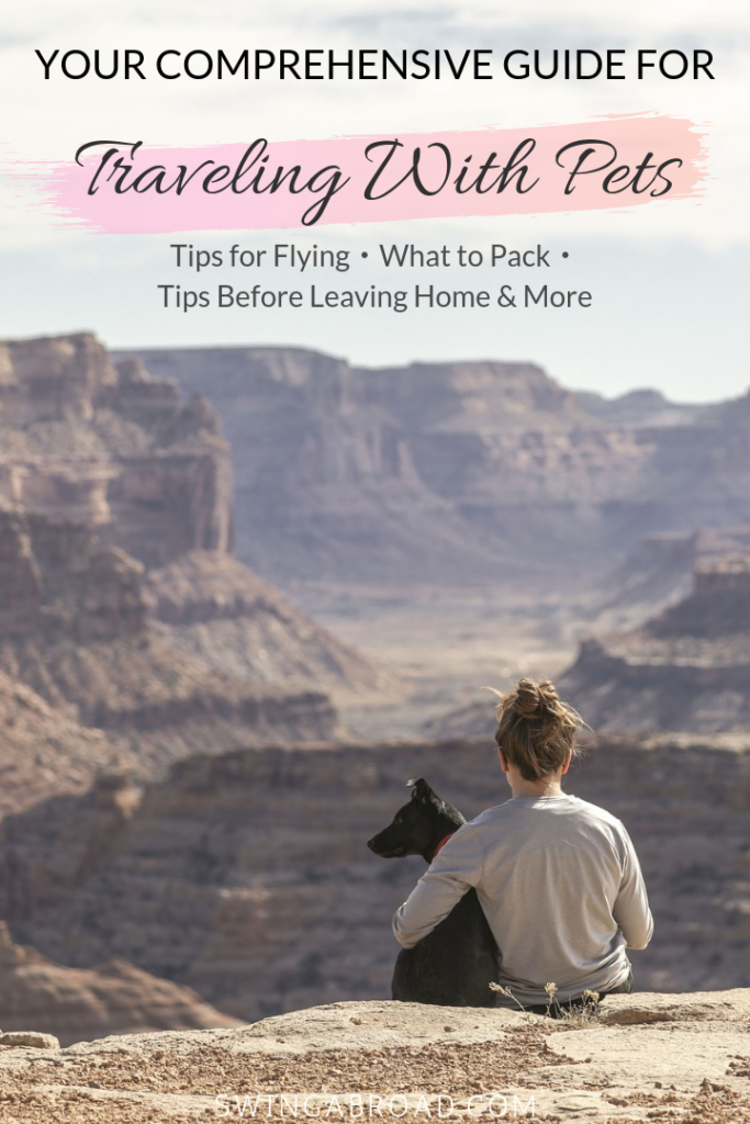 Ultimate Guide to Travel With Pets Pin
