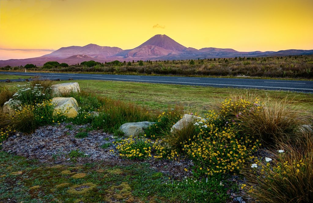 Free and Cheap Things to do in New Zealand North Island